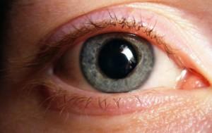 """Pupille, das """"Fenster zur Seele"""". Foto: Supersteffen / de.wikipedia, cc-by-sa-3.0"""