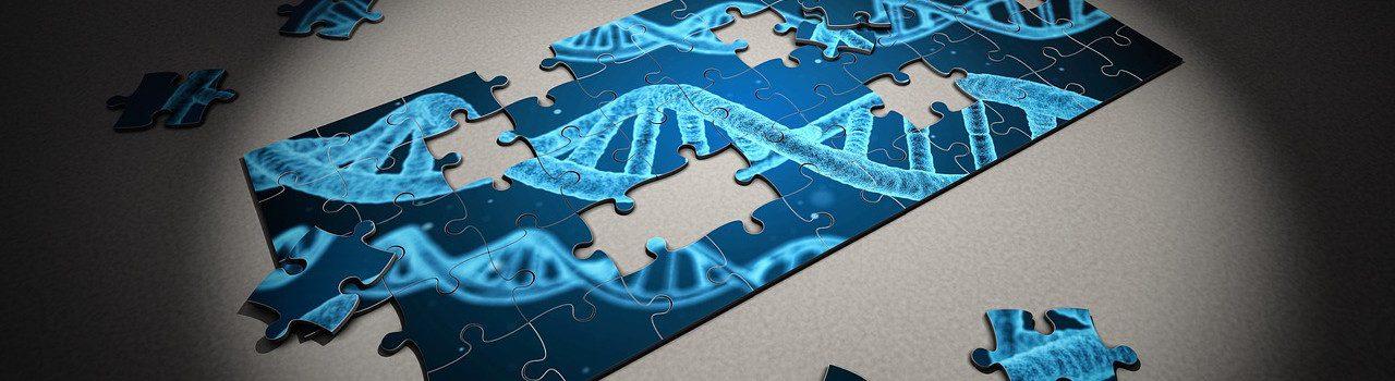 Bild von DNS-Strängen als unfertiges Puzzle